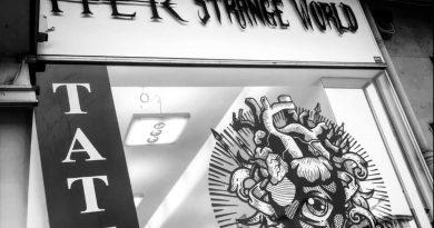 HER STRANGE WORLD Cherche tatoueur/se (88000)